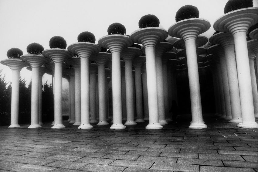 Architectural Column Architecture No People In A Row OpenEdit Black And White Black & White