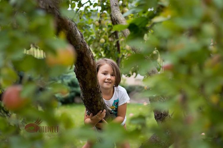 Ogród Tree Child Childhood Smiling Happiness Blond Hair Healthy Lifestyle Boys Standing Fun Apple Tree