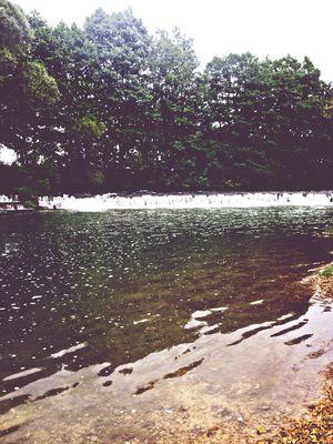 AMPt - Escape River