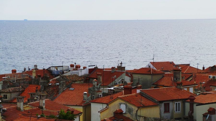 Slovenia Piran Old Town Roofs Holiday Sea And Sky Sky Hanging Out Enjoying Life Summer Seeing The Sights
