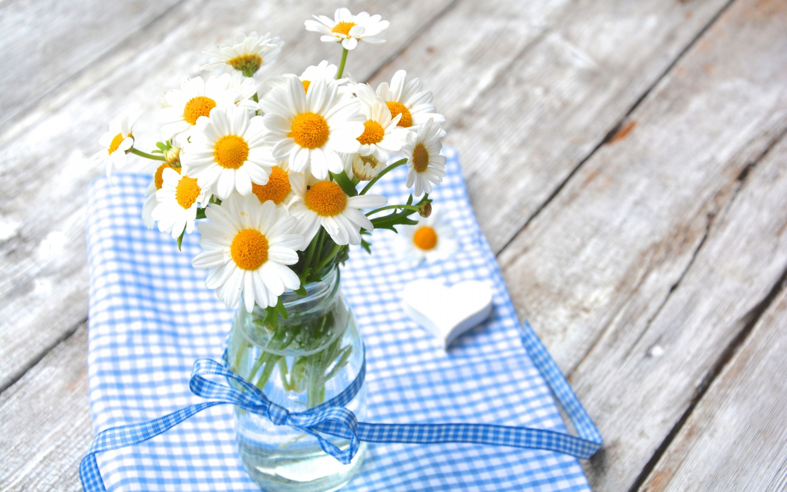 flower, wood - material, freshness, table, high angle view, no people, flower head, vase, close-up, fragility, jar, day, nature, outdoors