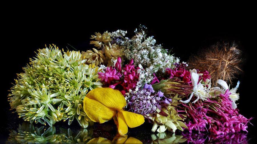 Le bouquet de