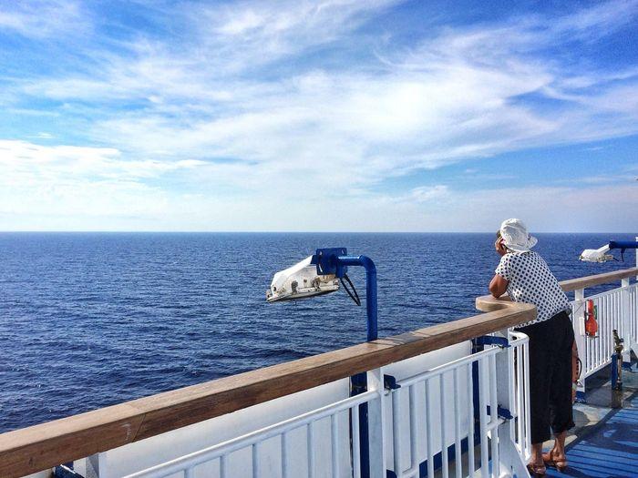 View of swan on sea against sky