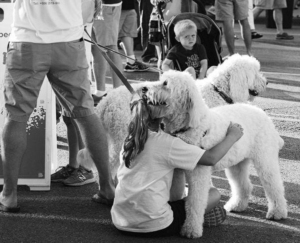 Bws_worldwide #bnw #blackandwhite #bw #blacknwhite Bwstreet Pets Dogs Of EyeEm Doglover