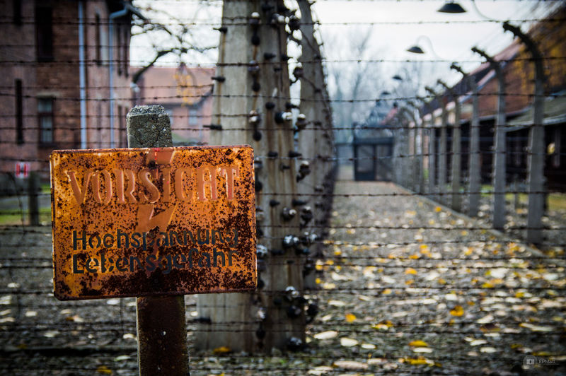 Auschwitz  Holocaust Memorial Close-up Fence WWII Holocaust Old
