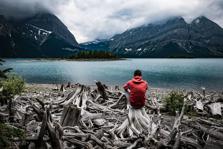 Rear view of man sitting on driftwood against lake
