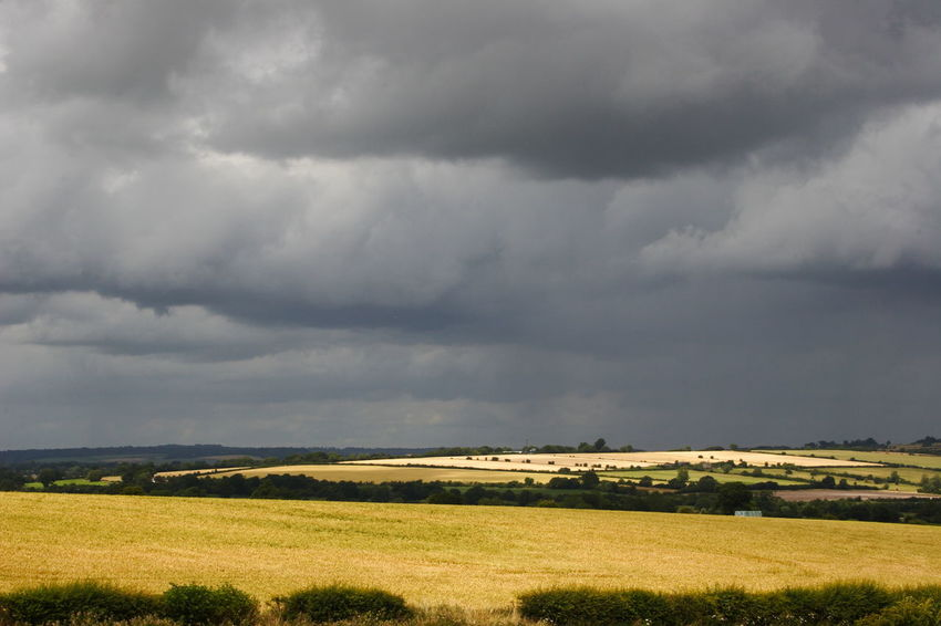 Grey Clouds over Open Fields Beauty In Nature Cloud Cloud - Sky Cloudy Day Field Grass Grassy Horizon Over Land Idyllic Landscape Nature No People Non-urban Scene Outdoors Overcast Remote Rural Scene Sky The Cotswolds Weather