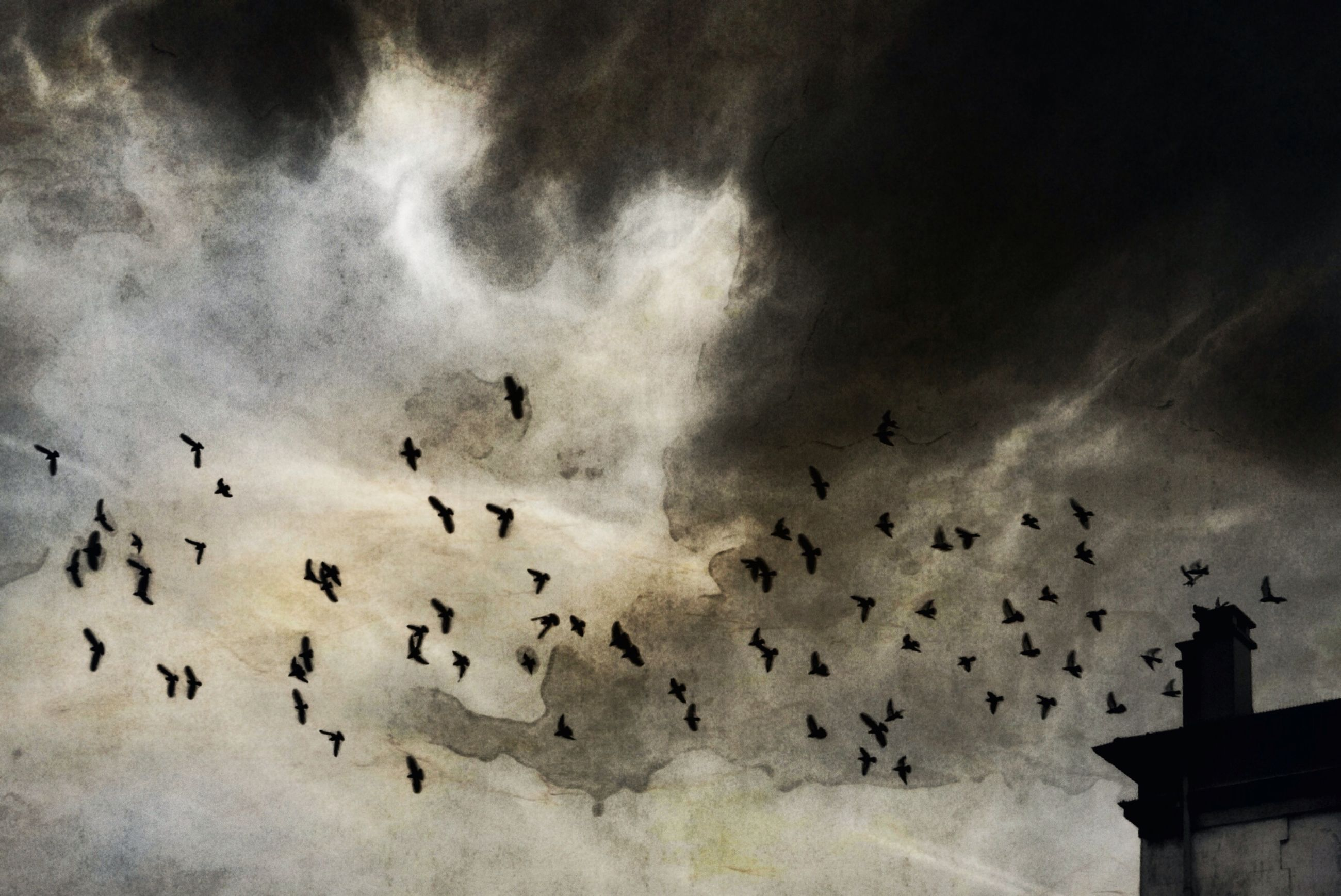 bird, animal themes, flying, animals in the wild, flock of birds, wildlife, sky, low angle view, cloud - sky, silhouette, cloudy, built structure, nature, weather, outdoors, dusk, mid-air, overcast, architecture