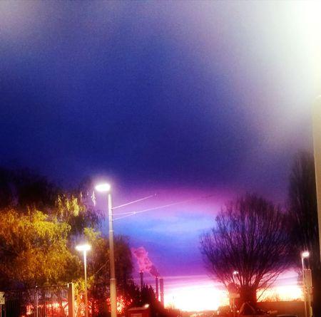 Les couleurs du soleil levant🌄 Illuminated Purple No People Tree Sky Outdoors