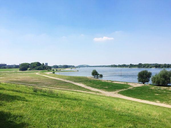 Duisburg Reihn Sommer