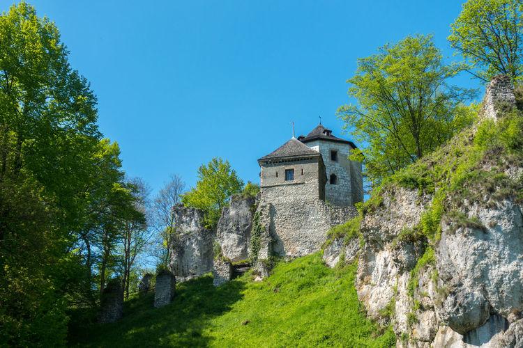 Burg Ojców Nationalpark Ojców Ojcowski Park Narodowy Poland Polska Ruiny Zamku Królewskiego Zamek W Ojcowie Blue Sky Old Castle Old Castle Walls