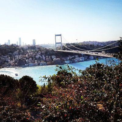 Colorsplashturkey Instagram_turkey Istanbuldaya şam Istinstagram hayatakarken