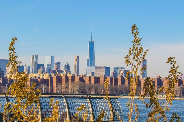 Newyorkcity Newyorker Empirestatebuilding Freedom Tower Perspective Manhattan New York City Brooklyn Cityscapes Winter New York Williamsburg Architecture East River Scenery Shots City Life Scenery Newyork
