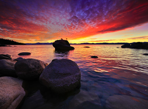 Lake Tahoe, California Amazing Bonzai California Calm Lake Landsape Loake Red Relaxing Road Seascape Sunrise Sunser Tree View Wanderlust