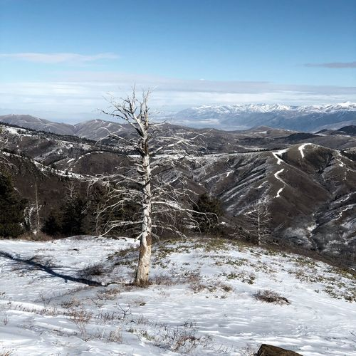 Snow Cold Temperature Winter Landscape Nature Beauty In Nature Mountain