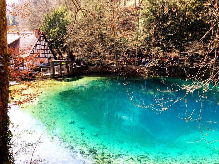 Blue Water Turquoise Fairy Tale Medival Magic Blautopf Magic Water Crystal Clear Bavarian Caribbean