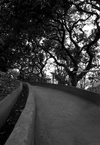 Way toward Infinity!!! Black And White Infinity Lonely Road Monochrome No People Road Showcase April Silence The Way Forward Trees Walkway