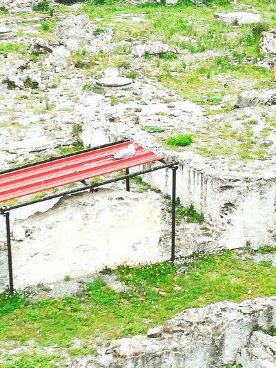 Rovine del Priamar a Savona