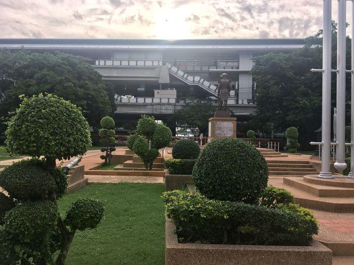 View of plants against built structure