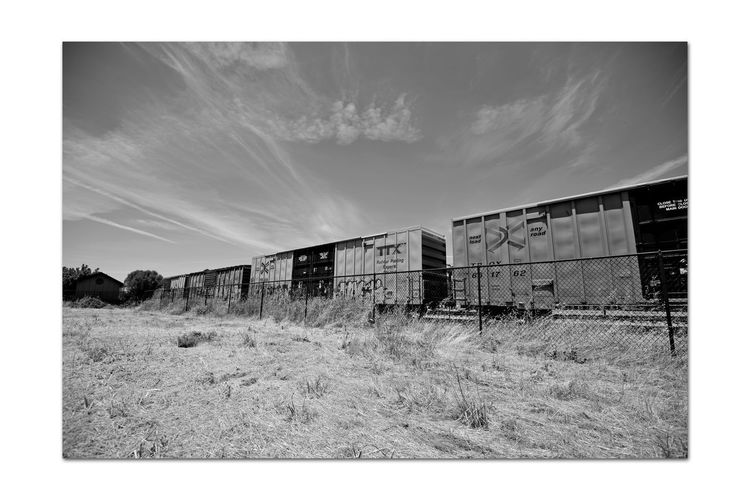 Freight Train 4 Union Pacific Railroad Intermodal Freight Transport Freight Train Boxcars Rolling Stock Cargo Passes Through Niles Canyon Sky And Clouds Monochrome_Photography Monochrome Black & White Black & White Photography Black And White Black And White Collection  Railroad_Photography Train_Photography Track Chainlink Fence Built Structure 2nd Largest Freight Railroad In USA Union Pacific Corp. Landscape_Collection Trees Dry Grasses