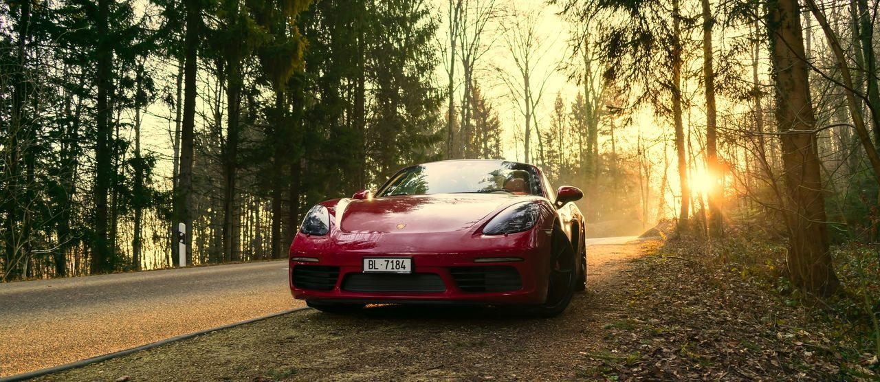 718 Adventure Boxster Boxster S Car Dawn Day Forest Land Vehicle Nature Outdoors Porsche Porsche 718 Real People Road Sportscar Sun Sunlight Sunset Transportation Tree