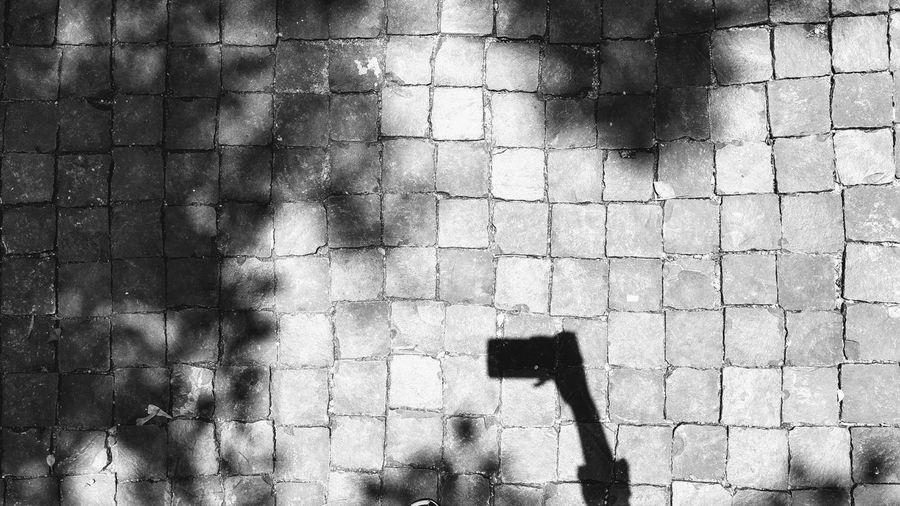 Shadow Day Outdoors Ground Groundcover Cobblestone Floor Blackandwhite