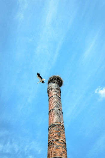 Low angle view of white stork flying over smoke stack against blue sky