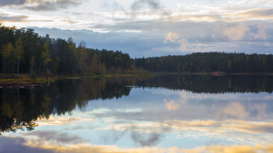 Hear no sound Beauty In Nature Cloud - Sky Forest Idyllic Lake Landscape Nature No People Outdoors Reflection Reflection Lake Sky Symmetry Tranquil Scene Tranquility Tree Water