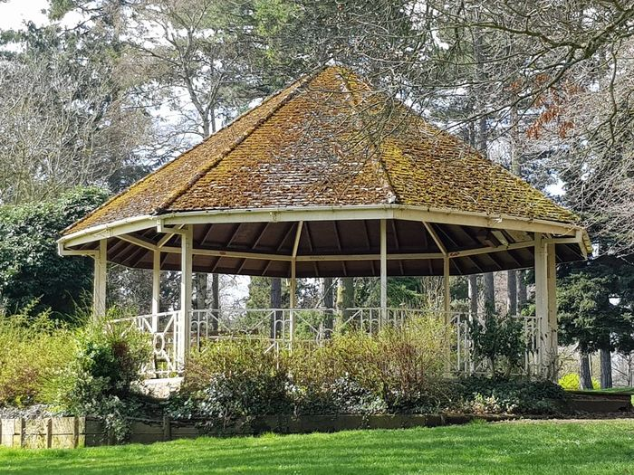 bandstand surrounded by trees EyeEmNewHere Bandstand Park Plants Nature Outdoors Tree Architecture Grass Built Structure Building Exterior Growing Fungus