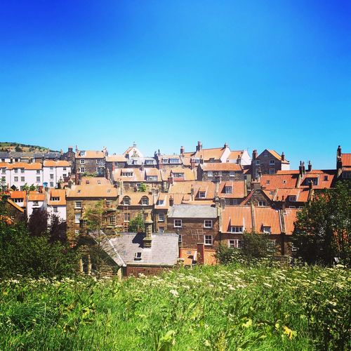 Robin Hoods Bay North Yorkshire East Coast Architecture Building Exterior Built Structure Clear Sky House Copy Space Residential Building Day Cityscape Blue No People Outdoors City Town Roof