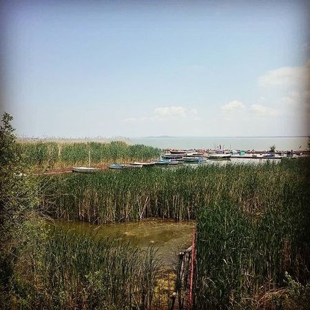 Creek on Lake Balaton @ Balatongyörök Hungary Plattensee Boats Blue Sky Summer Relax Chill Travel Nature Naturelovers Nekemabalaton Balcsi Mik Ig_hun Insta_hun Photooftheday Ikozosseg Latergram The Great Outdoors - 2016 EyeEm Awards