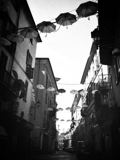 Mondovì Streets Umbrellas