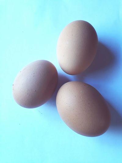 Egg Eggshell No People Close-up Egg Yolk Indoors