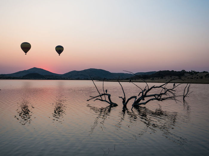 Hot Air Balloons Nature Balloons Beauty In Nature Dry Hot Air Balloon Landscape No People Outdoors Safari Sunrise Tranquil Scene Wildlife