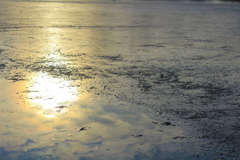 Deutschland Frozen Lake Winter Wörlitz Beauty In Nature Close-up Ice Skating Nature No People Outdoors Reflection Sea Sunset Water
