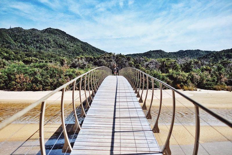Bridge over the shore against lush foliage