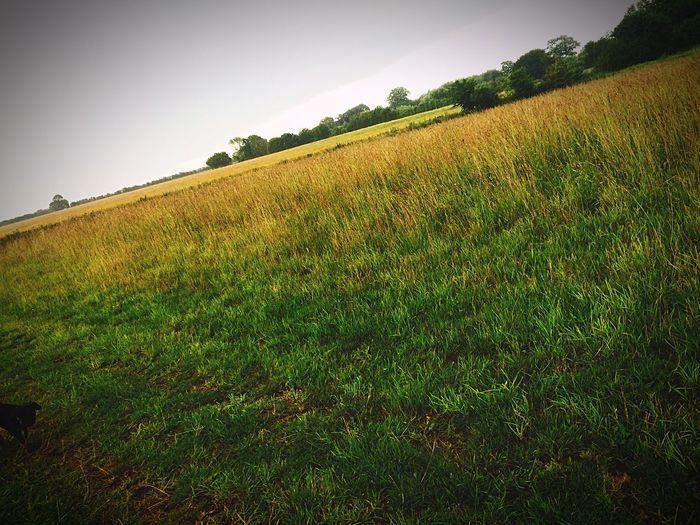 Photo Landscape Scerene Scerenity