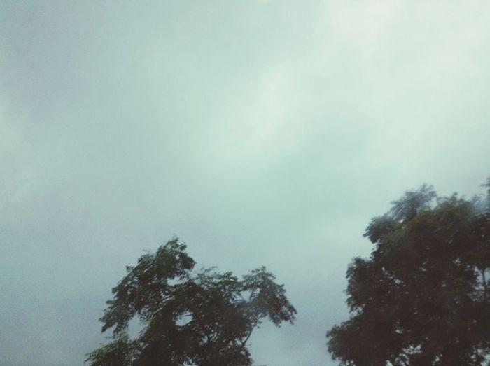 Let it rain... ??