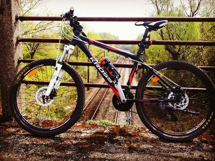 My Bike And I Check This Out Landscape Biketrip 65km Kross Bike Passion Colors