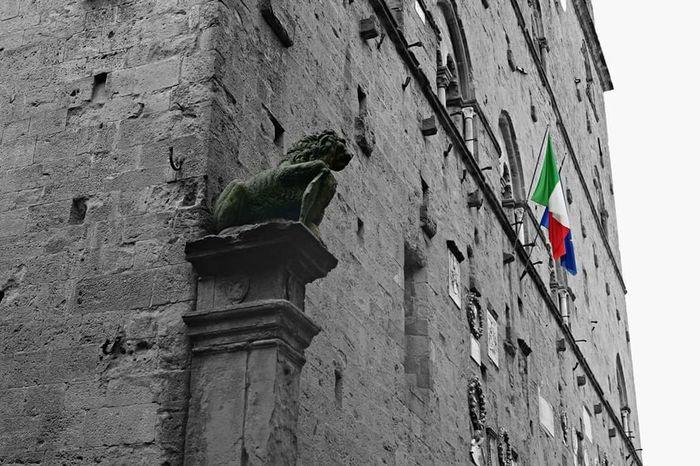 Arezzo Toscana Italia Arte Comune Bandiere Flags Blackandwhite Colors