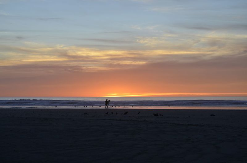 Silhouette person on beach against sky during sunset