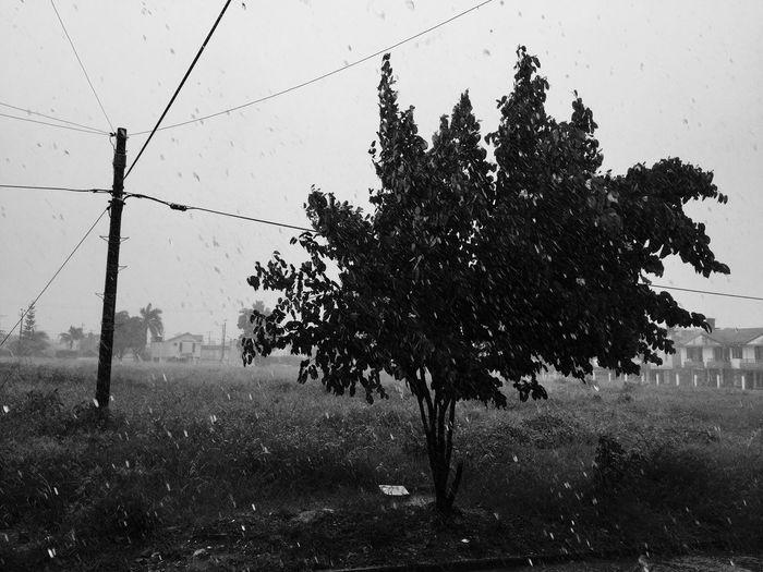Monochrome Photography como tú no hay nadie Tupalabra