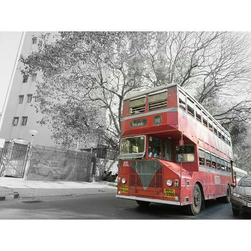 🚇 Busno124 Mumbai Mumbaikar Aamchimumbai Loveit Igers Instatravel Travel Travelgram Instaclick Canon_official Picomania Photography Doublediker Redbus Transport . Follow4follow Like4like IP_Red Indiapictures