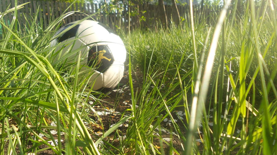 Sport ♥ Football Is Life