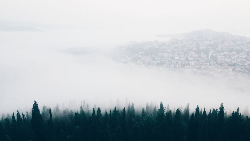 Fog Foggy Beauty In Nature Outdoors Sky Nature Weather Aerial View White Green Tree Trees City City View  Fall Autumn October Izmit Turkey İzmit, TURKEY ızmit The Great Outdoors - 2017 EyeEm Awards Perspectives On Nature