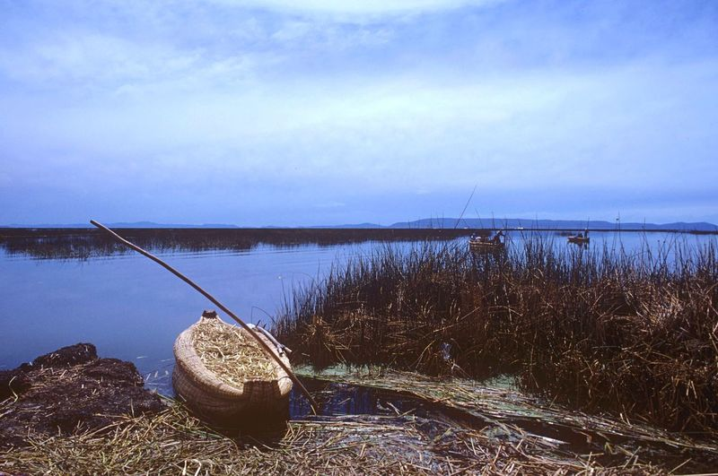 Reed Boat Reed Island Titicaca Uros Uros Island Boat Reed - Grass Family Reed Water Nautical Vessel Nature Outdoors Sky Tranquil Scene Tranquility Lake Day No People Beauty In Nature Moored Scenics Travel Destinations Grass