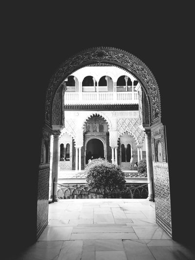 EyeEm Selects Andalusia Spain Andalucía SPAIN Architecture Travel Destinations History Cultures Seville, Spain Seville Royal Alcazar Moorish Moorish Architecture