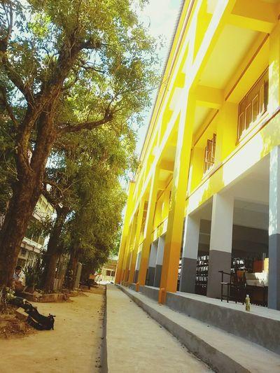 และนี่คือ ตึกสีเหลืองสะท้อนแสงงงงง