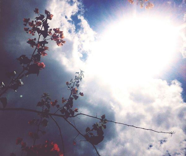 My sky. First Eyeem Photo