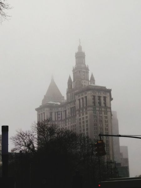 Rain Day Downtown Manhattan, NYC Tree City Fog Sky Architecture Building Exterior Built Structure